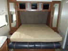 1017bed